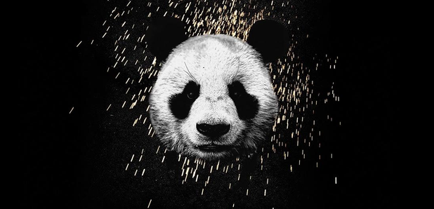Desiigner Panda Artwork