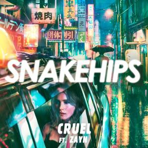 Snakehips Cruel Zayn